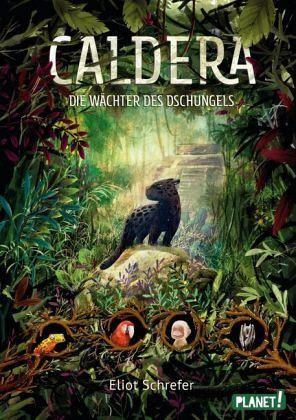 Cover vom Buch 'Rettet Caldera!'