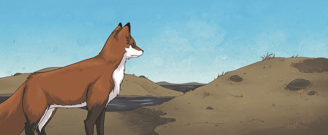 Kanada: Die Fuchs Frau