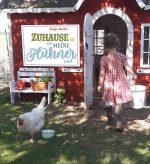 Cover vom Buch'Zuhause im Hühnerstall'